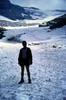 Westalpen-Gletscher zu Beginn der 1980er Jahre